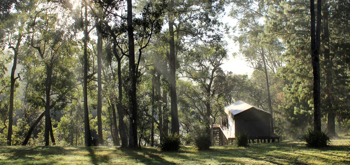 luxury tent shrouded in morning mist