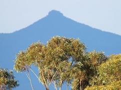 pidgeon-house-mountain